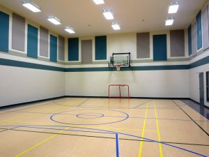 Sound panels on gym walls lower noise levels
